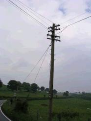 A Telegraph Pole